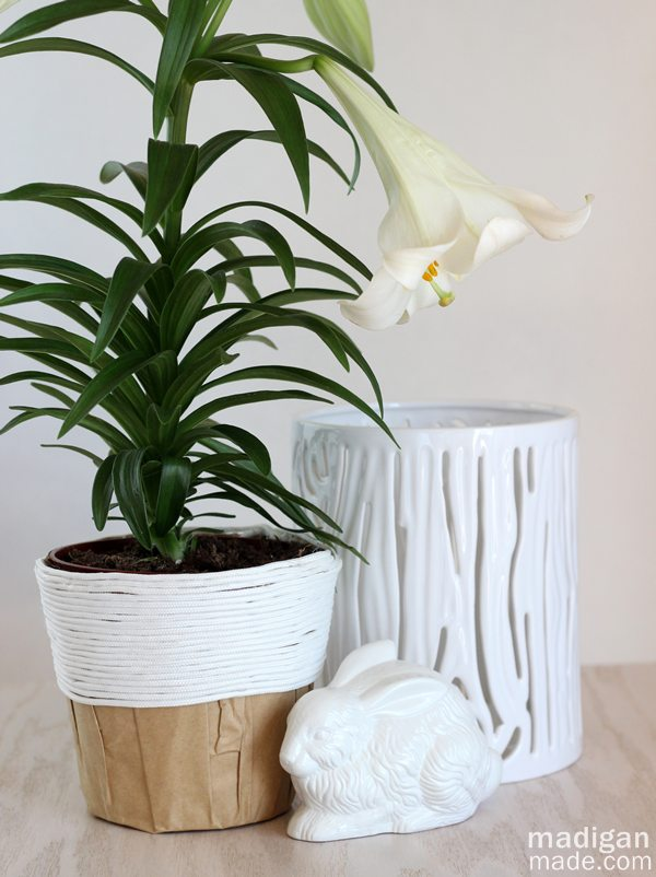 Single plant pot update with rope