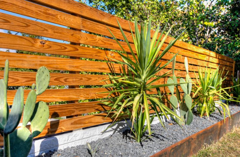 horizontal wood fence with plants around