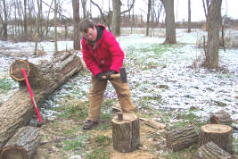 cutting free firewood